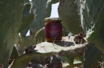 pot miel cactus darmous euphorbe daghmous